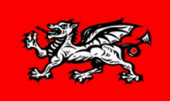 English Wessex Dragon Flags
